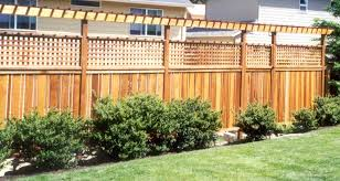 George And Gabe Arbors And Trellises Backyard Fences Trellis Fence Fence Toppers