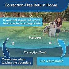 Petsafe Stay Play Wireless Dog Fence For Stubborn Dogs Heel Boy Heel