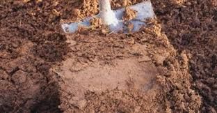improving clay soil with composting worms