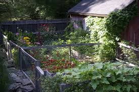 a cook s garden in upstate new york