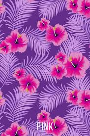 vs pink wallpaper discovered by gi lʎ