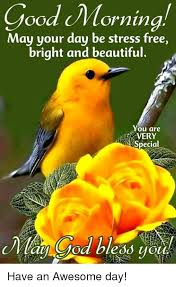 day be stress free bright and beautiful