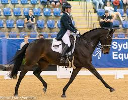 Dressage NZ - Congratulations to Wendi Williamson and Don... | Facebook