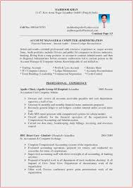 accountant resume free sle resume