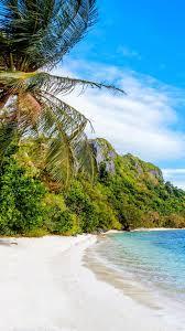 beach sea palm trees blue sky