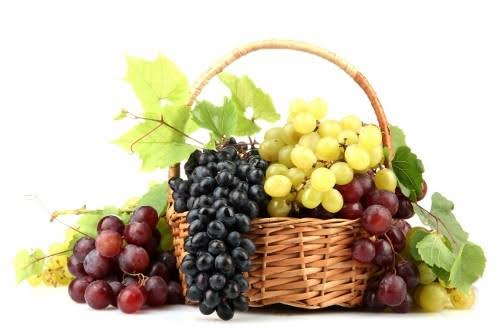 Image result for grapes in a basket""