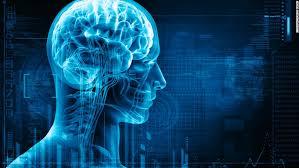 10 best brain apps cnn