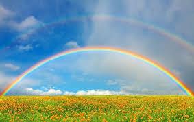 Sognare un arcobaleno Simbolismo e significato dell'arcobaleno nei ...