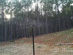 The Purr Fect Fence Revisited The Life Of Lew Ayotte