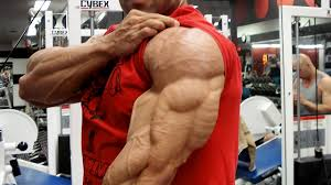 day 4 chest shoulders triceps pump