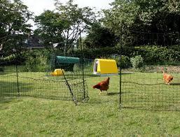 Omlet Chicken Fencing Chicken Fence Chickens Backyard Chicken Enclosure