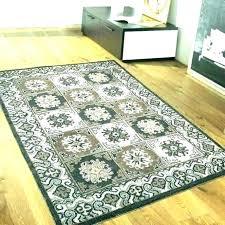 outdoor rug target outdoor rugs green