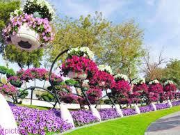 صور الربيع صور خلفيات الربيع صور فصل الربيع الطبيعة الجميلة و