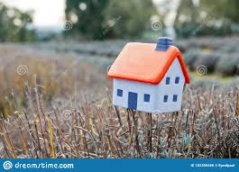 Small Soft Miniature Toy House Placed On Lavender Branch In Farm In France Stock Photo Image Of French Aromatherapy 182309456