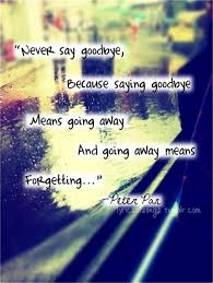 quotes about goodbyes tumblr