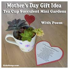 tea cup succulent mini gardens