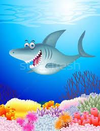 funny shark vector ilration surya