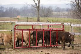 Creep Feeder Panels Tarter Farm And Ranch Equipment American Made Quality Since 1945