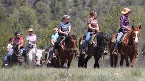 gifts for horseback riders
