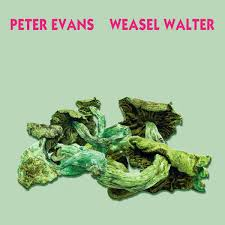 Peter Evans & Weasel Walter - Poisonous - CTEBCM: Can This Even Be Called  Music?
