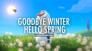 goodbye winter hello spring olaf pictures photos and images for