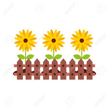 Fence Wooden With Flowers Vector Illustration Design Royalty Free Cliparts Vectors And Stock Illustration Image 81086118