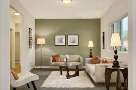 101 transitional style living room
