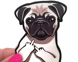 Pug Decal Etsy