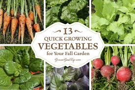 growing vegetables for your fall garden