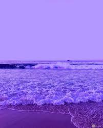 صور باللون البنفسجي من الطبيعة روعة