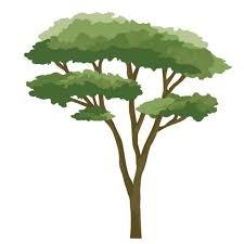 Large Safari Animal Decals With Acacia Tree Safari Nursery Wall Decals