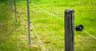 Electric Fence Basics