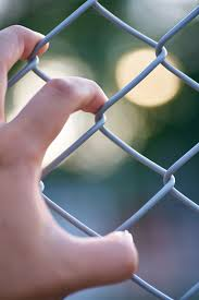 Page 61 Of Chainlink Fence Pictures Curated Photography On Eyeem