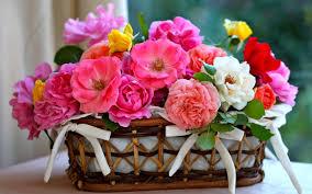 اجمل واروع باقات الورود قدم لحبيبتك بوكية ورد دليل المحبة اروع