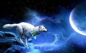 Totem Animals | Spirit Animal, Symbolism and Meaning