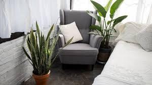 9 Indoor Garden Growing Top Tips Miracle Gro
