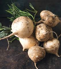 health benefits of the root vegetable