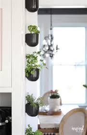 unique herb planter ideas herb pots