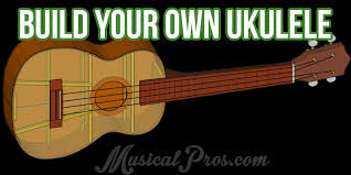 building your own ukulele al pros