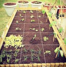 square foot gardening planner a must