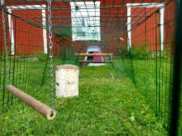 Eglu Go Chicken Coop Chicken Coops Walk In Chicken Runs Chicken Fencing And More Omlet