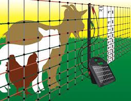 82 Electric Poultry Pen Powerfields High Quality Electric Fence