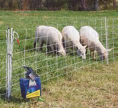 Electric Fencing Examples Bear Smart Durango