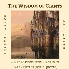 the wisdom of giants life lessons from hagrid in harry potter
