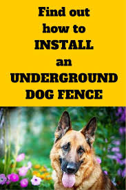 How To Install An Underground Dog Fence Find Out The Tips And Tricks That Will Save You Time And Headache Dog Fence Invisible Fence Dogs Diy Dog Fence
