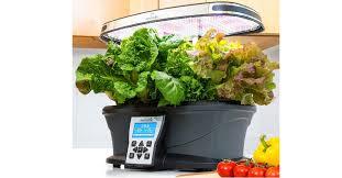 the 5 best indoor herb garden kits