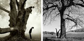The Photography of Rodney Smith