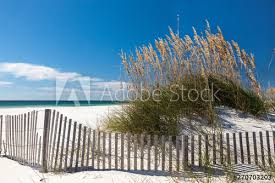 White Sand Beach With Sea Oats And Dune Fence At Mid Day Buy This Stock Photo And Explore Similar Images At Adobe Stock Adobe Stock