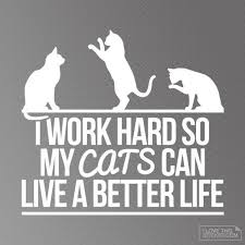 I Work Hard For My Cats Decal Cat Lover Decals