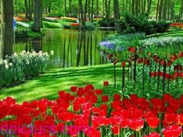 اجمل المناظر الطبيعية 2020 صور طبيعه خلفيات حدائق روعه طبيعة خلابة